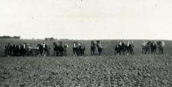 Gerning - Marken sås til på Bidstrup 1932